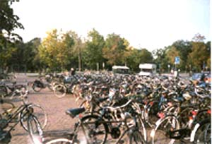 Sea of Bikes in Holland